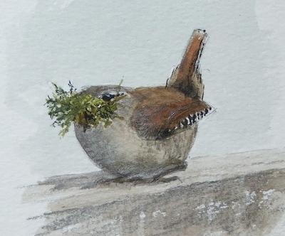 Wren with moss- watercolour in sketchbook