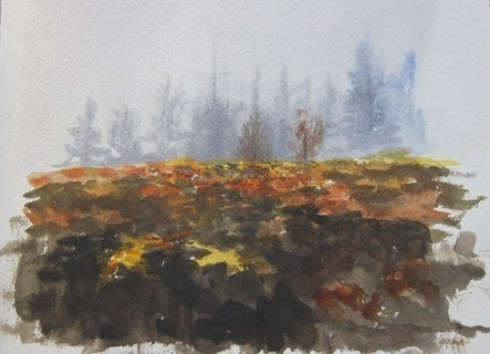 Bracken and heather in mist- watercolour in sketchbook