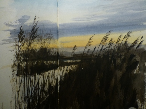RSPB Greylake reserve on Christmas Eve 4.30pm- watercolour in sketchbook