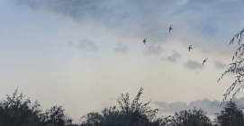 3 Swifts on a thundery afternoon. Watercolour. SOLD