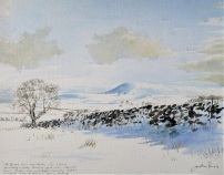 Snow at Hawnby, North York Moors. Currently available at Yorkshire Arboretum.