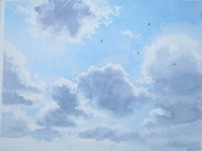 Swifts high over Ampleforth. Available at Birdscapes, Norfolk.