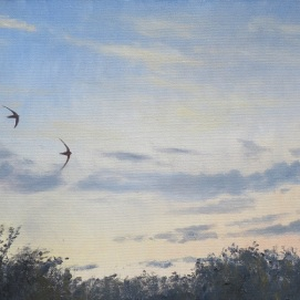 Swift flypast. Oil on deep frame canvas 60x30cm. Available in SHOP