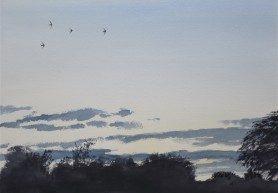 Swifts at twilight. Watercolour. Available in SHOP.
