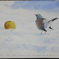 Fieldfare in snow. Watercolour.